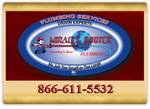 contact miracle rooter